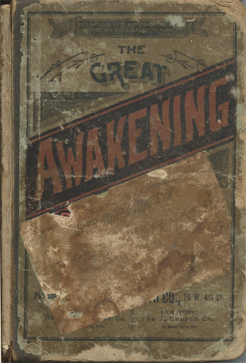 The Great Awakening : Front Cover
